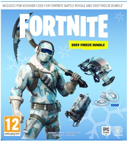 Fortnite Deep Freeze Edition - Code in a Box Version  [PlayStation 4]